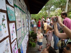 the display during Sea Turtle Day 2009